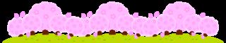桜12.png